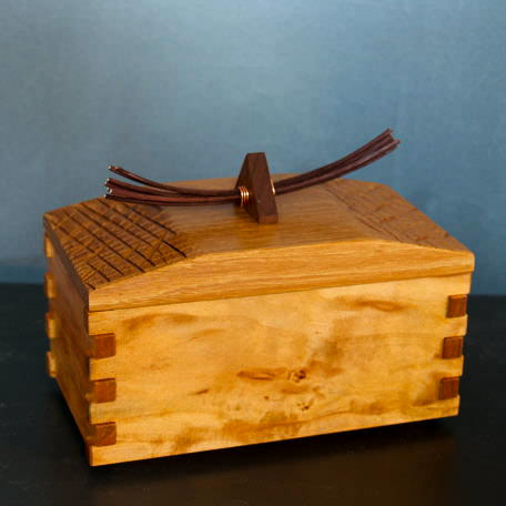 Birch and elm winter woods box